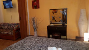 apartment-iro-9